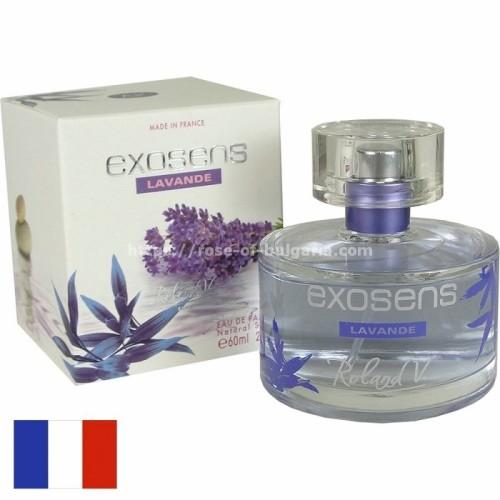 Exosens lavender