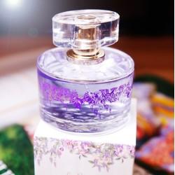 La provence de Manon - Lavendel